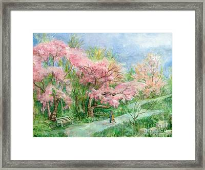 Cherry Blossom Walk Framed Print