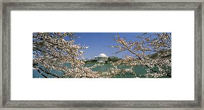 Cherry Blossom With Memorial Framed Print by Panoramic Images