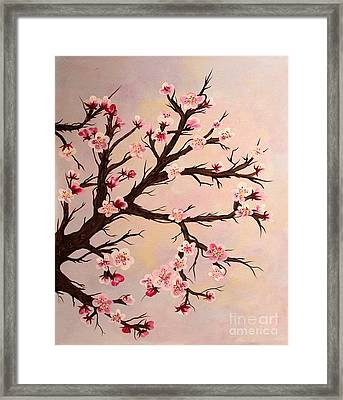 Cherry Blossoms 2 Framed Print by Barbara Griffin