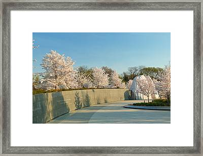 Cherry Blossoms 2013 - 022 Framed Print by Metro DC Photography