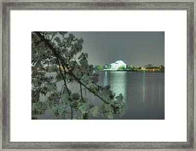 Cherry Blossoms 2013 - 102 Framed Print by Metro DC Photography