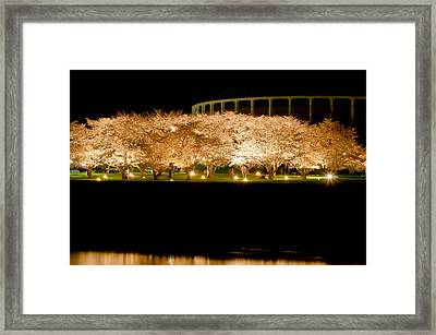 Cherry Blossoms Across The Hocking Framed Print by Shirley Tinkham