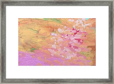 Cherry Blossoms By Pink River Framed Print by Naomi Jacobs