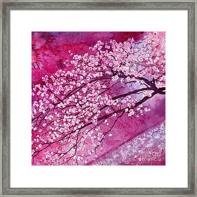 Cherry Blossoms Framed Print by Hailey E Herrera