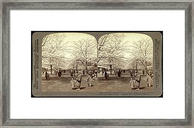Cherry Blossoms, The National Flower Of Japan Framed Print by Litz Collection