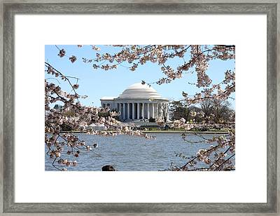 Cherry Blossoms With Jefferson Memorial - Washington Dc - 01131 Framed Print