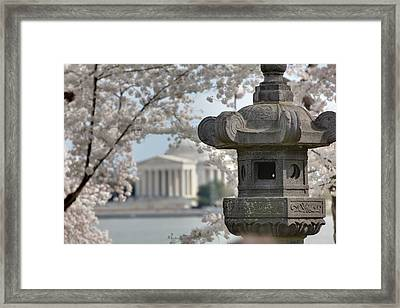 Cherry Blossoms With Jefferson Memorial - Washington Dc - 011323 Framed Print by DC Photographer