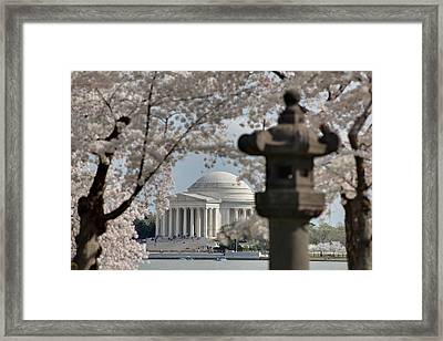 Cherry Blossoms With Jefferson Memorial - Washington Dc - 011325 Framed Print by DC Photographer