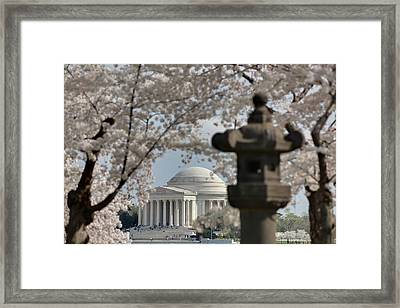 Cherry Blossoms With Jefferson Memorial - Washington Dc - 011326 Framed Print by DC Photographer
