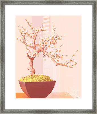Cherry Bonsai Tree Framed Print