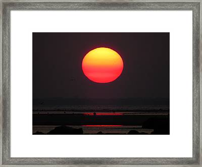 Framed Print featuring the photograph Cherry Drop Sunrise by Dianne Cowen