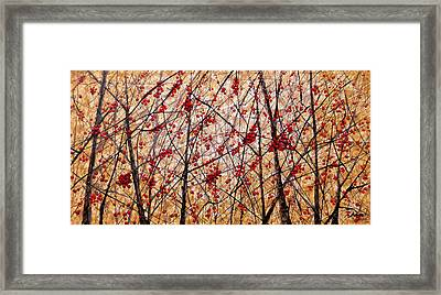 Cherry IIi Framed Print
