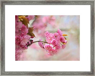 Soft Cherry Framed Print by Jessica Jenney