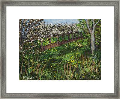 Cherry Orchard Evening Framed Print