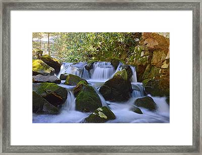 Cherry Run Cascades #1 - Bald Eagle State Forest Framed Print