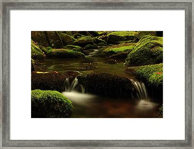 Cherry Run Grotto Framed Print by Cody Arnold
