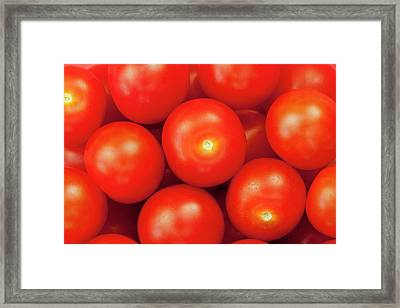 Cherry Tomatoes Framed Print by Andrew Dernie