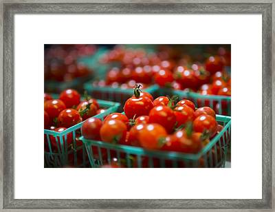 Cherry Tomatoes Framed Print by Caitlyn  Grasso