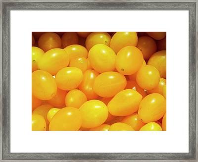 Cherry Tomatoes 'ildi' Framed Print