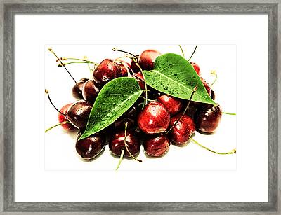 Cherry With Lovely Drops Framed Print