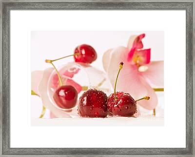 Cherrychat Framed Print by Christine Sponchia