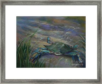 Chesapeake Bay Blue Crab Framed Print