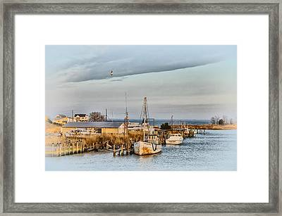 Chesapeake Fishing Boats Framed Print by Bill Cannon