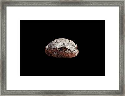 Cheshire Toad Framed Print