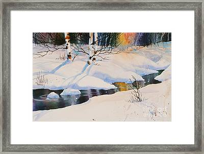 Chester Creek Shadows Framed Print by Teresa Ascone