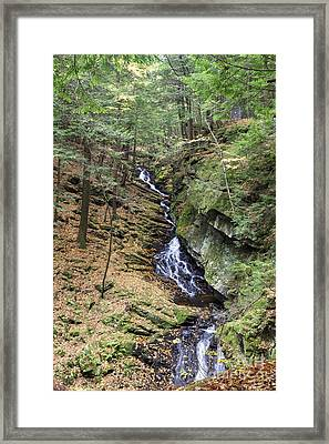 Chesterfield Gorge Natural Area - Chesterfield New Hampshire Usa Framed Print by Erin Paul Donovan