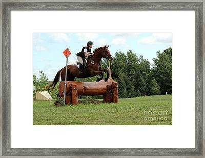Chestnut Over Log Jump Framed Print