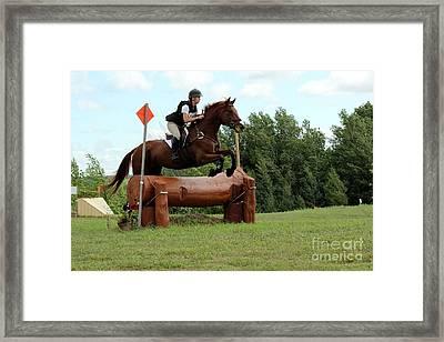 Chestnut Over Log Jump Framed Print