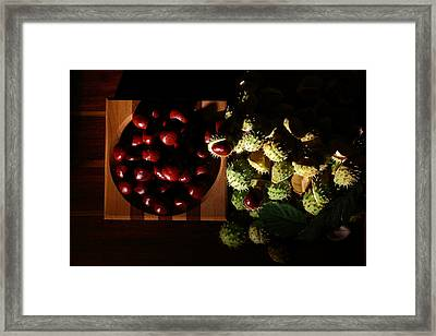 Framed Print featuring the photograph Chestnuts by David Andersen