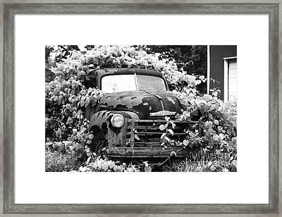 Chevrolet History Framed Print by John Rizzuto