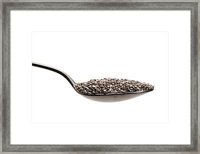 Chia Seeds Framed Print by Daniel Sambraus