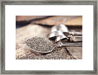 Chia Seeds Framed Print by Stephanie Frey