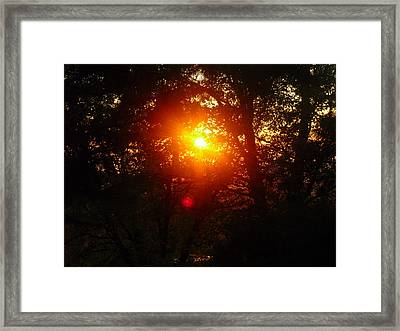Framed Print featuring the photograph Chiaronaturo I by Ursel Hamm and Kristen Kennedy