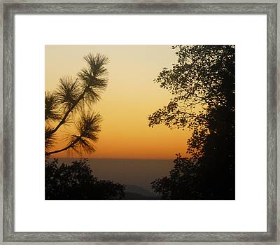 Framed Print featuring the photograph Chiaronaturo IIi by Ursel Hamm and Kristen R Kennedy