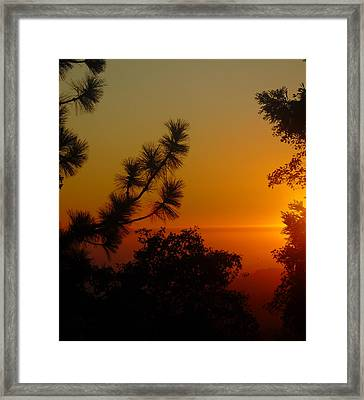 Framed Print featuring the photograph Chiaronaturo Iv by Ursel Hamm and Kristen R Kennedy