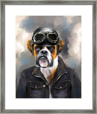 Chic Boxer Aviator Framed Print