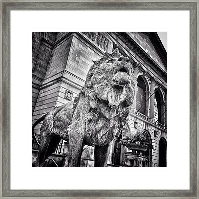 Lion Statue At Art Institute Of Chicago Framed Print