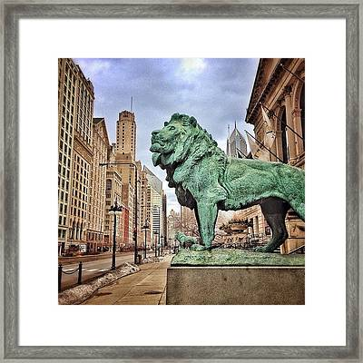 Chicago Art Institute Lion Statue Framed Print