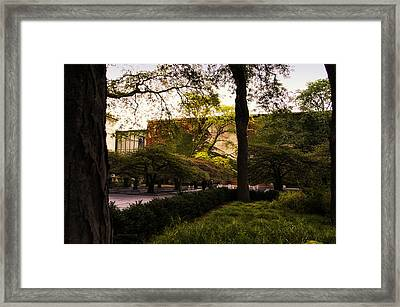 Chicago Art Institute The Surreal Garden Framed Print by Thomas Woolworth