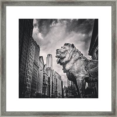 Art Institute Of Chicago Lion Picture Framed Print