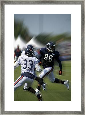 Chicago Bears Te Dante Rosario Training Camp 2014 03 Framed Print by Thomas Woolworth