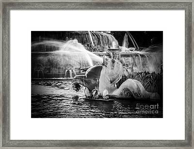 Chicago Buckingham Fountain Seahorse In Black And White Framed Print by Paul Velgos