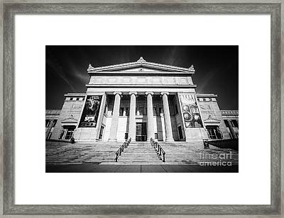 Chicago Field Museum In Black And White Framed Print by Paul Velgos