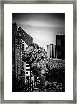 Chicago Lion Statues In Black And White Framed Print by Paul Velgos