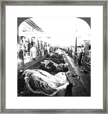 Chicago Meatpacking, C1909 Framed Print by Granger