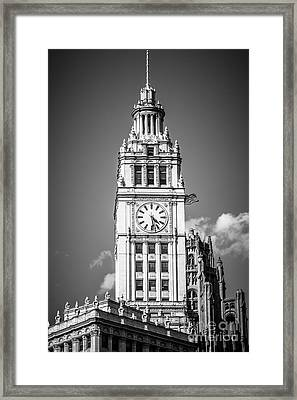Chicago Wrigley Building Clock Black And White Picture Framed Print by Paul Velgos